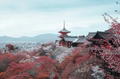 日本有十年有效签证吗?